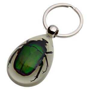 Glow In The Dark Real Insect Keychain