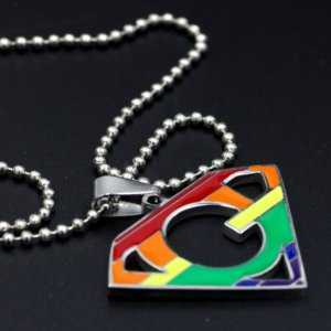 Super Gay and Lesbian Pride Stainless Steel Rainbow Pendant Necklace  LGBT Jewelry